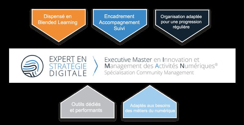 Schéma moyen EXECUTIVE MASTER Innovation et Management des Activités Numériques® Spécialisation Community Management