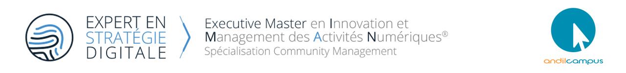 Formation Innovation et Management des Activités Numériques – Community Management